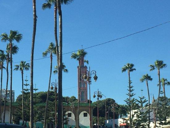 Vista palmeras Zoco Grande, Tánger